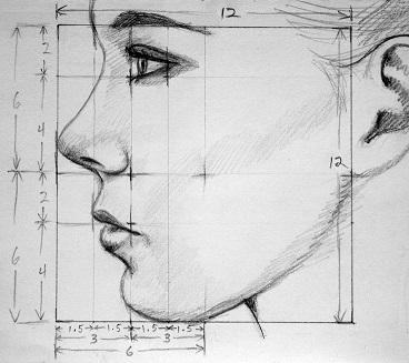 arte o ciencia - enfoque basado belleza facial humana