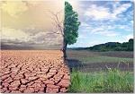 Día Mundial de Lucha contra la Desertificación y la Sequía, 2021