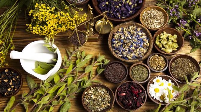 Medicina natural y tradicional – Fitoterapia